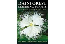 Rainforest climbing plants