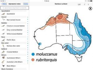 birds-of-australia-moorcombe02