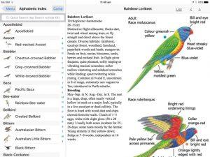 birds-of-australia-moorcombe04