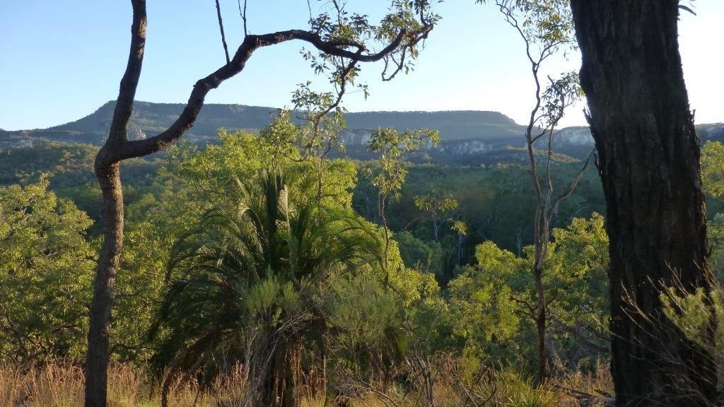 Carnavon Gorge, Queensland