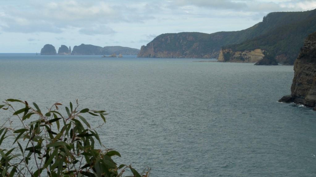 Biodiversity resources for Tasmania