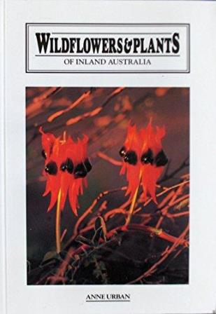Wildflowers & Plants of Inland Australia Book Cover