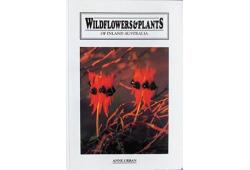 Wildflowers & Plants of Inland Australia