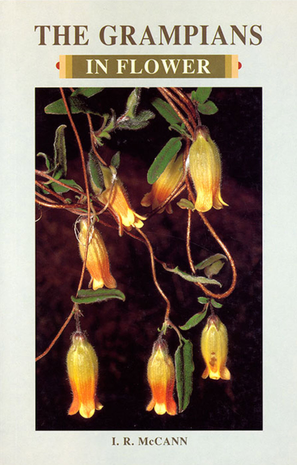 The Grampians in Flower Book Cover