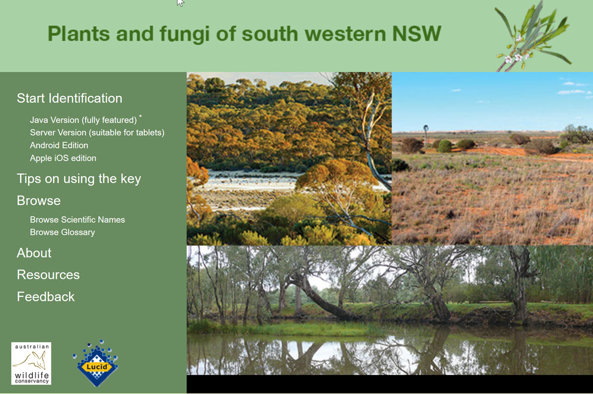 Plants and Fungi of South Western New South Wales Book Cover