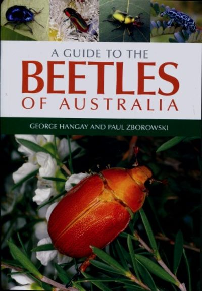 A Guide to the Beetles of Australia Book Cover