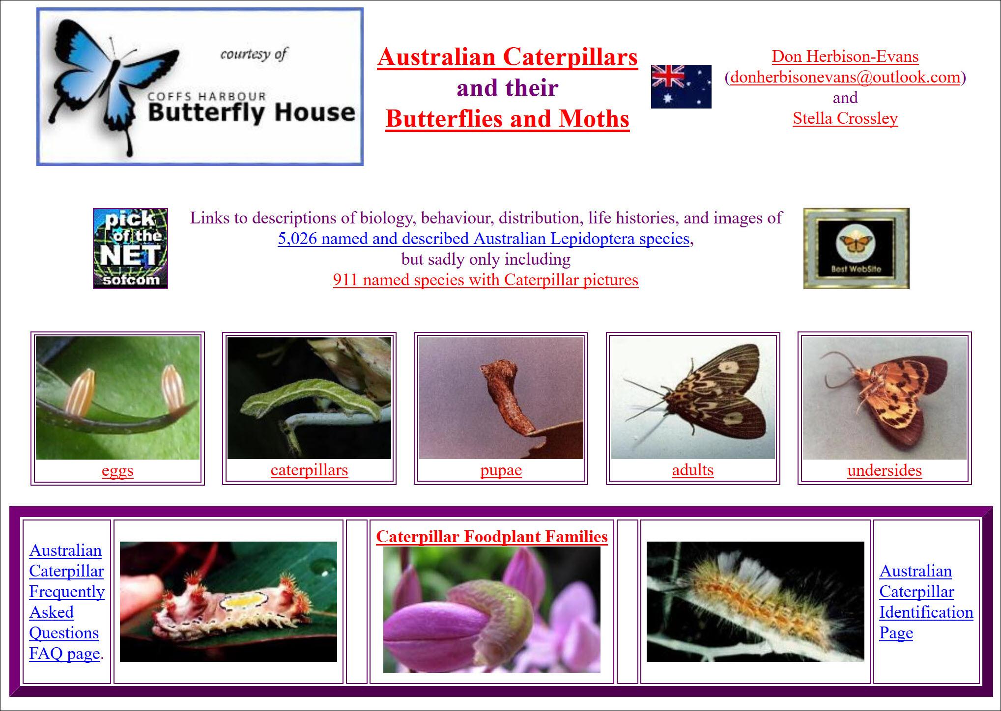 Australian Caterpillars and their Butterflies and Moths website Book Cover
