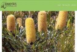 Honkey Nuts website