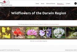 Wildflowers of the Darwin Region