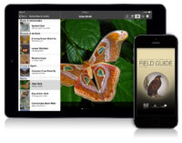 Field Guide to Northern Territory Fauna app