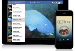 Field Guide to New South Wales Fauna app