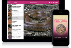 Field Guide to Queensland Fauna app
