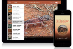 Field Guide to South Australian Fauna app