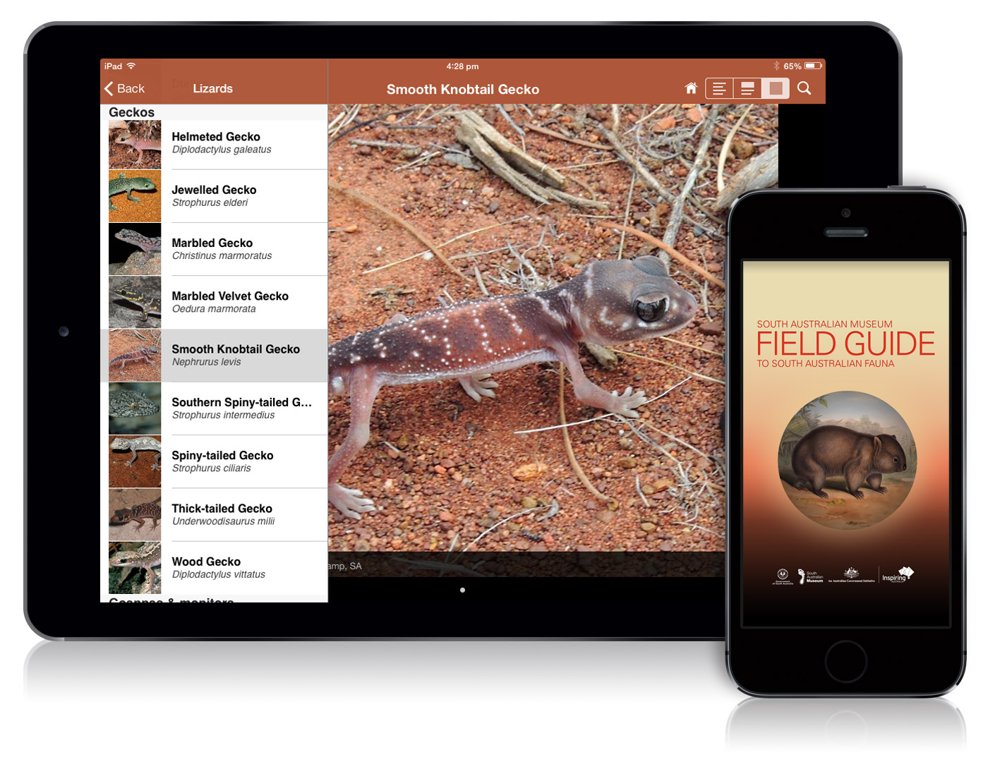 Field Guide to South Australian Fauna Book Cover
