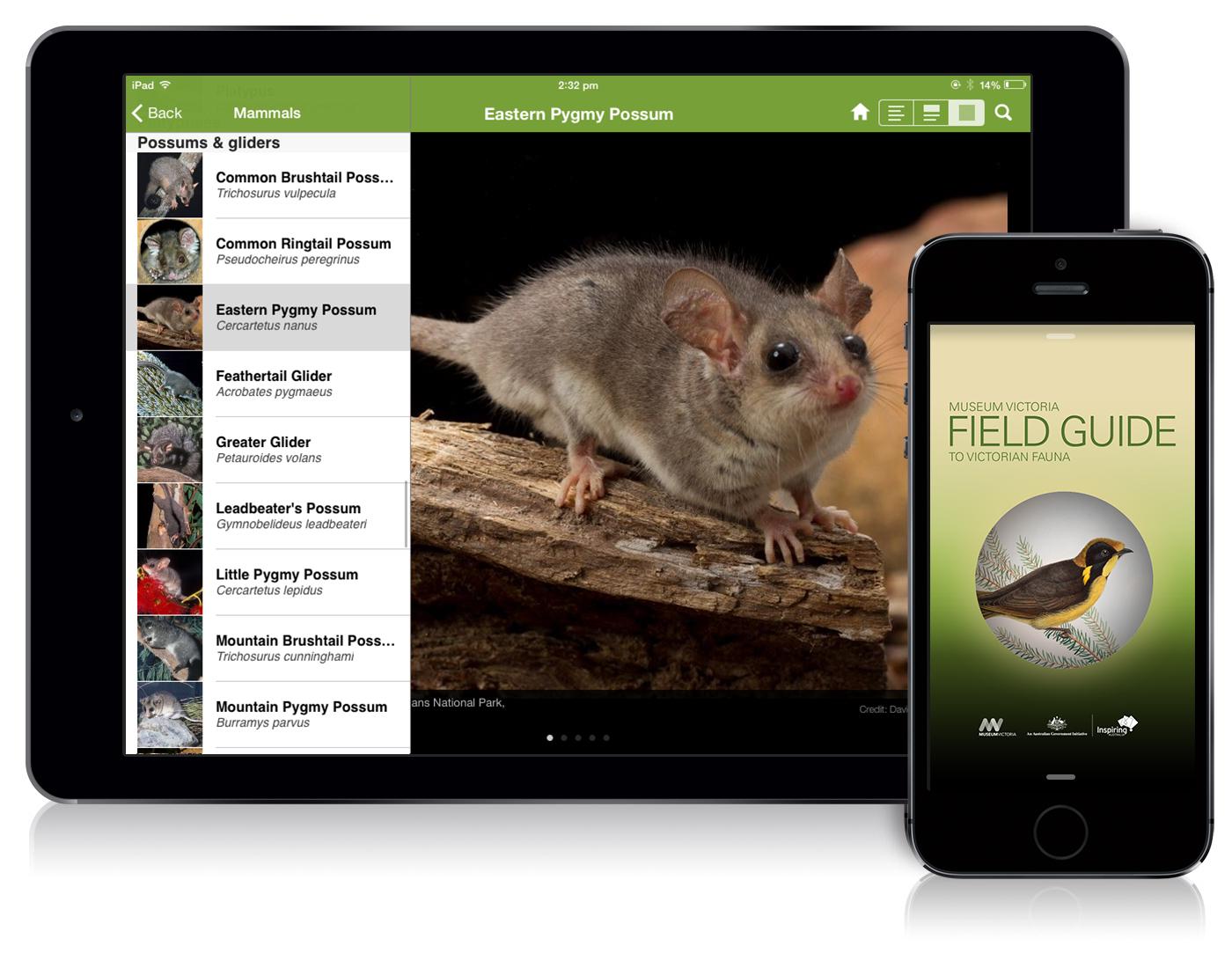 Field Guide to Victorian Fauna Book Cover