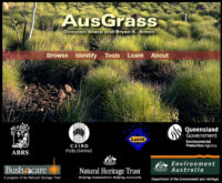 AusGrass website