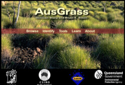 AusGrass website
