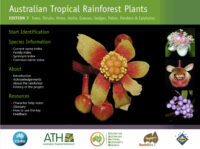 Australian Tropical Rainforest Plants website