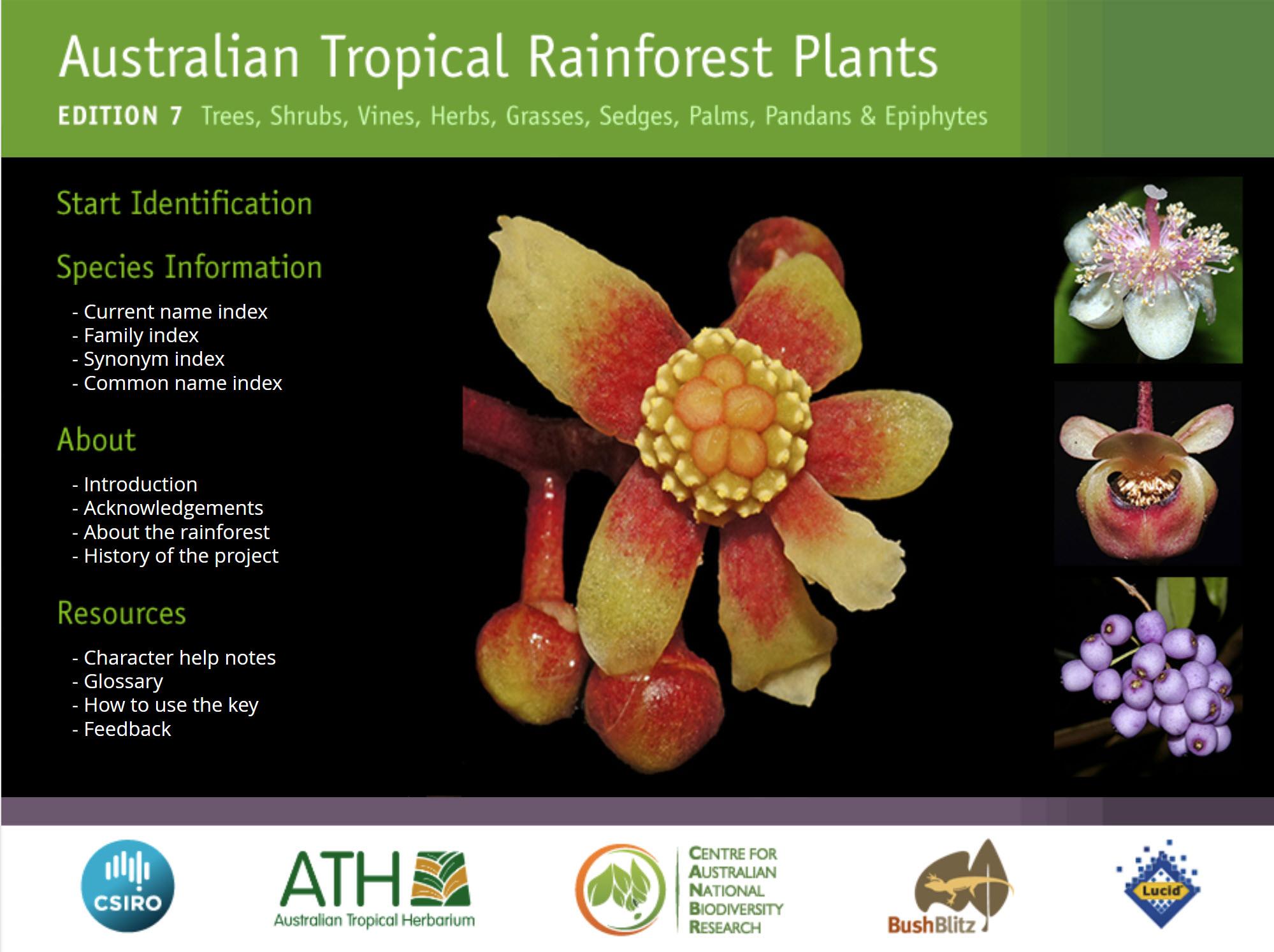 Australian Tropical Rainforest Plants Book Cover