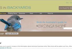 Birds in backyards website