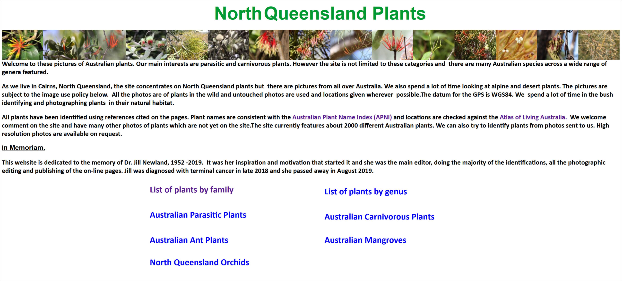 North Queensland Plants Book Cover