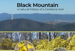 Black Mountain: a natural history of a Canberra icon