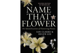 Name that flower: the identification of flowering plants